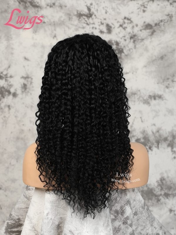 360 Lace Wigs Human Hair Wigs With Baby Hair Brazilian Kinky Curly Pre-Plucked Hairline Dream Swiss Lace 360 Full Lace Wigs Lwigs154