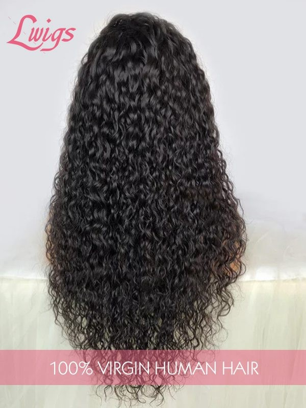 Brazilian Virgin Hair 9A Grade Human Hair Wigs Undetectable HD Lace Curly Hair Style 13x6 Lace Front Wigs [LWigs110]