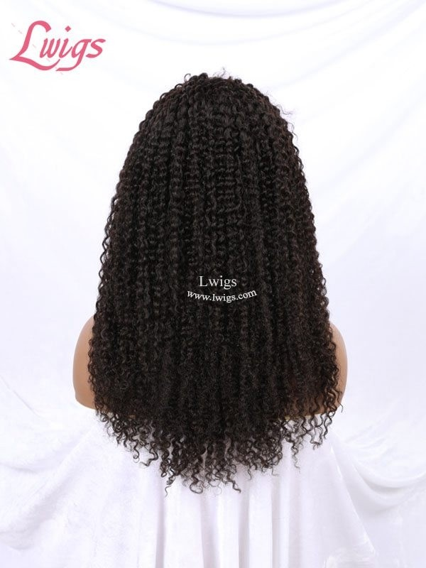 Free Shipping Kinky Curly Peruvian Human Hair 360 Lace Wigs Undetectable HD Lace Curly For Black Women 360 Lace Wig With Baby Hair LWigs191